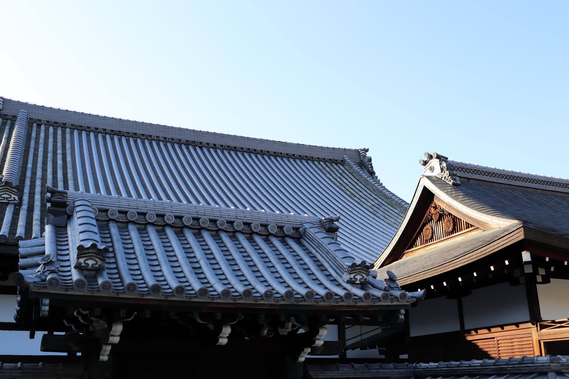 今日のお寺の屋根 大谷本廟