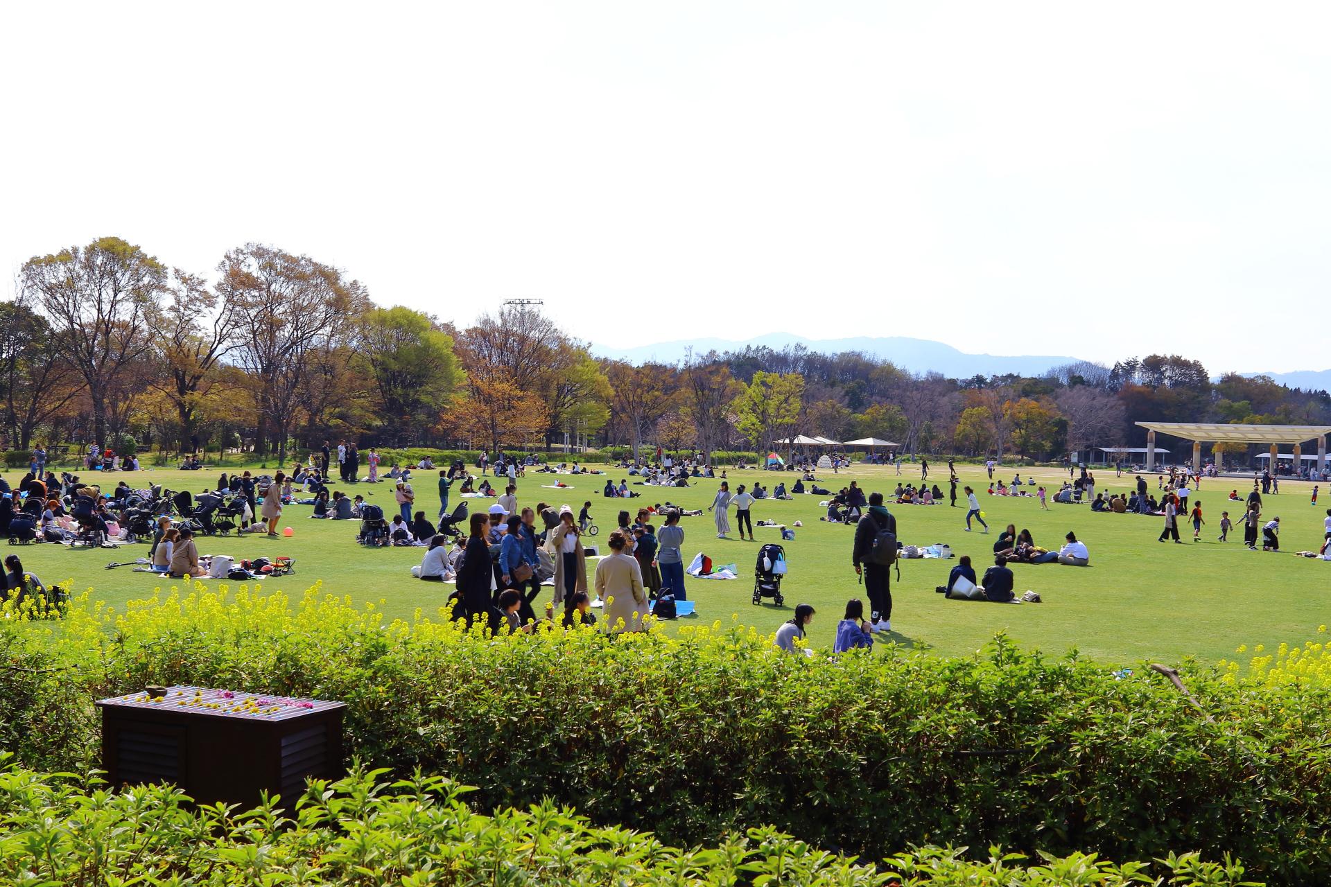 面積約13.7ヘクタールの都市公園「京都・梅小路公園」